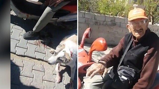 Zavallı köpeği kilometrelerce sürüklerken yakalanan cani