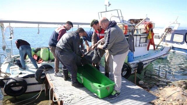 Deniz patlıcanı toplayan balıkçı hayatını kaybetti