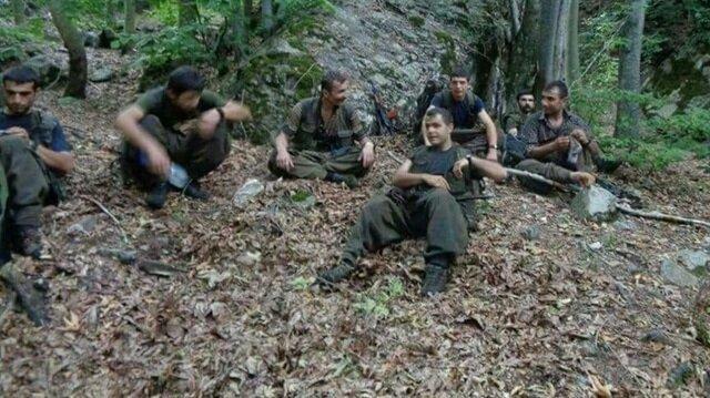 Amanoslar'da 29 terörist öldürüldü