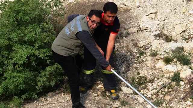 İnşaat çukuruna düşen kurt, itfaiye ekiplerince kurtarıldı.