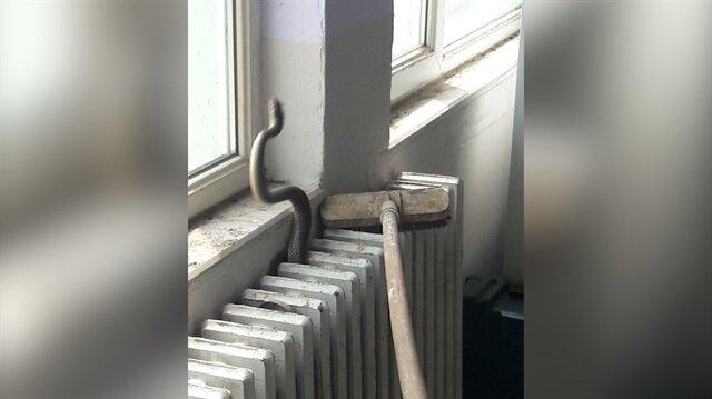 Sınıfta kalorifer peteğine giren yılanı itfaiye çıkardı