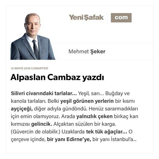 Alpaslan Cambaz yazdı