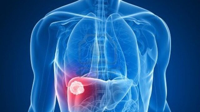 Karaciğer yağlanması oruç tutanlarda azalıyor