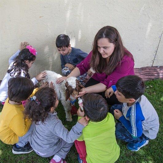 Kindergarten in SE Turkey inculcates love for animals
