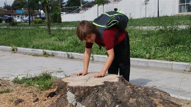 Doruk Tuzcu, mahalledeki ağacın kesilmesine üzülmüştü.