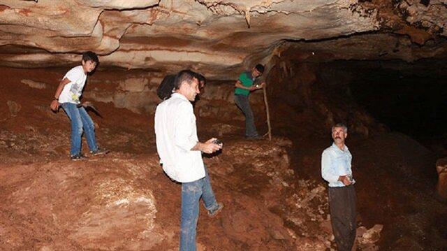 Üç arkadaşın keşfettiği mağaradan binlerce yarasa çıktı