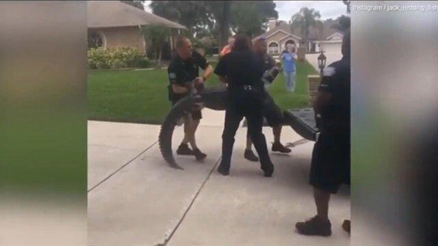 Polise kafa atan timsah