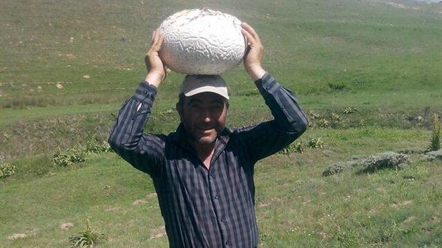 Şükrü Tutucu 3 ve 4 kiloluk dev mantarlar buldu.