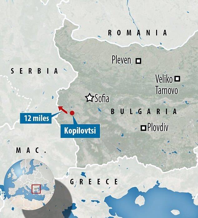 İnek Penka, sınıra yakın bir bölgede otlarken Sırbistan topraklarına girmişti.