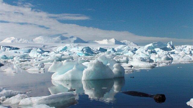 Antarctic ice melting at an alarming rate: Reports