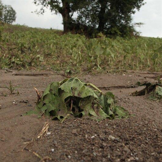 Kırklareli'nde dolu yağışı hayatı olumsuz etkiledi