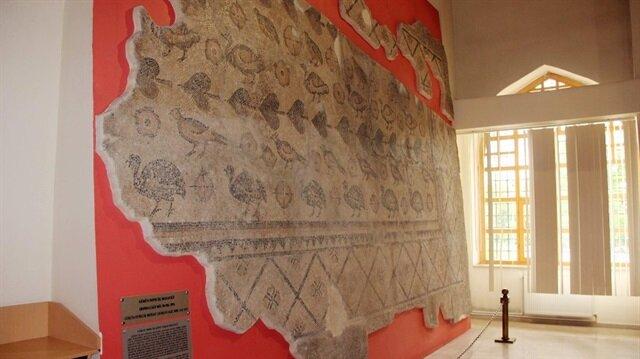 14 günlük çalışma sonucu hayvan dışkıları nedeniyle tahrip olan Roma dönemine ait taban mozaiği büyük bir titizlikle ahırın tabanından çıkarıldı.