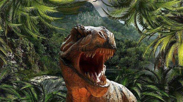Profesör Julia Clarke, bulguların, dinozorları çeneleri arasından uzanan dilleriyle gösteren canlandırmaların gerçeği yansıtmadığını söyledi.