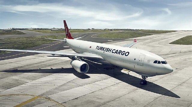 Turkish Cargo carries young giraffes