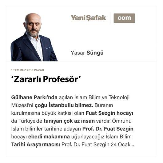 'Zararlı Profesör'