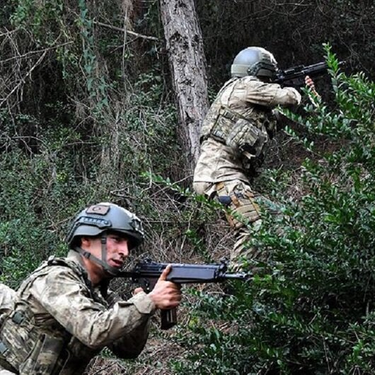Bitlis'te 5 terörist öldürüldü