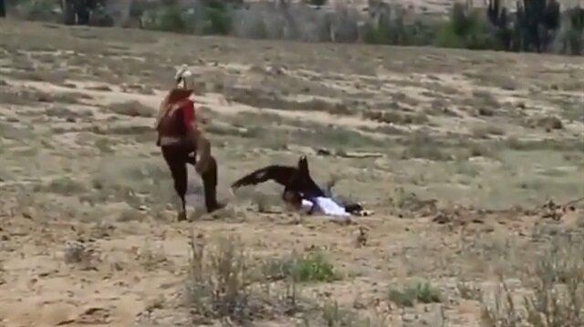 Küçük kız dev kartalın pençesinden zor kurtarıldı