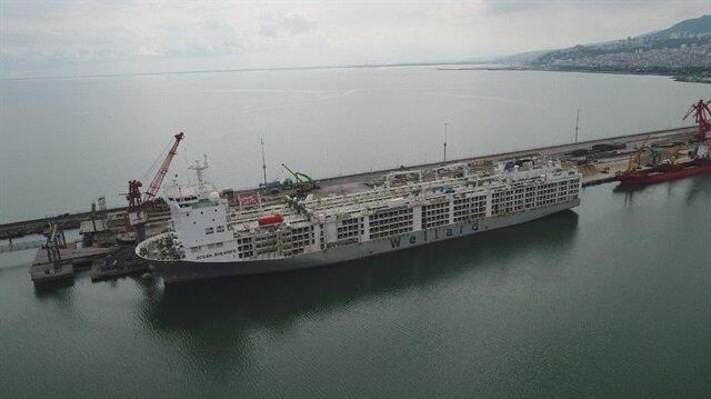 20 bin angusu Samsun'a getiren gemi pazartesi gününe kadar limanda olacak.
