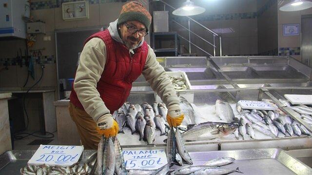 Balıkçılar yeni sezonda palamuttan umutlu