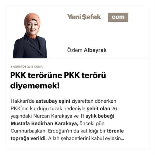 PKK terörüne PKK terörü diyememek!