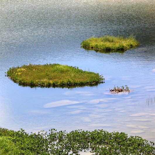 Yüzer adalarla hava tahmini yapıyor