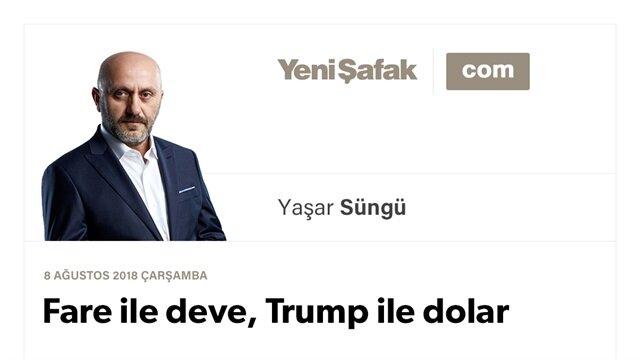 Fare ile deve, Trump ile dolar