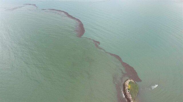 3 milyon TL'lik fındık Karadeniz'e döküldü