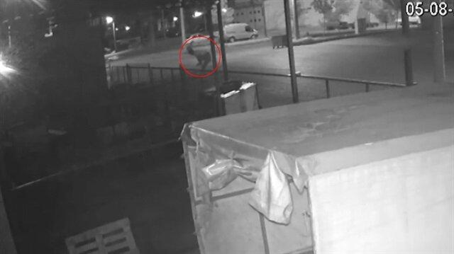 Hırsızlar bekçi köpeğini çaldı