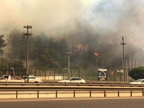 Bursa'da orman yangını karayolunu kapladı