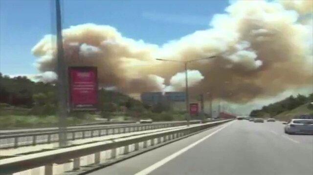 Bursa'daki ormanlık alanda yangın kamerada