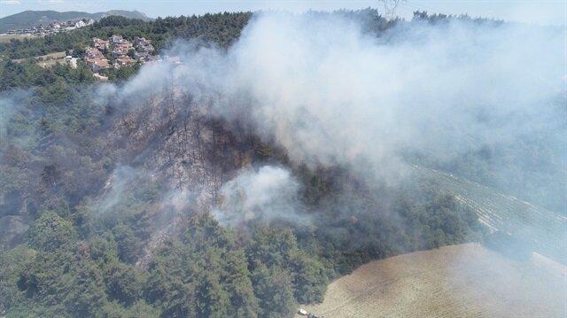 Bursa'da ormanlık alanda yangın.