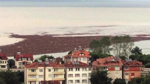 Ordu'da yaşanan sel felaketi sonrası fındıklar denize dökülmüştü.