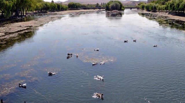 Türkiye'nin önemli su kaynaklarından Kızılırmak'ta su azaldı, kirlilik arttı...