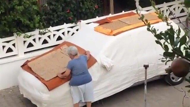 İzmir'de sokak hayvanlarına çivili tuzak kuran kadın