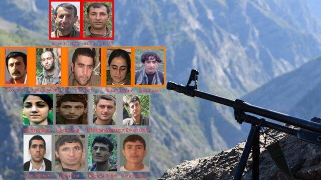 Güvenlik güçlerinin düzenlediği başarılı operasyonların ardından Tunceli'de üst düzey PKK'lılar öldürüldü.