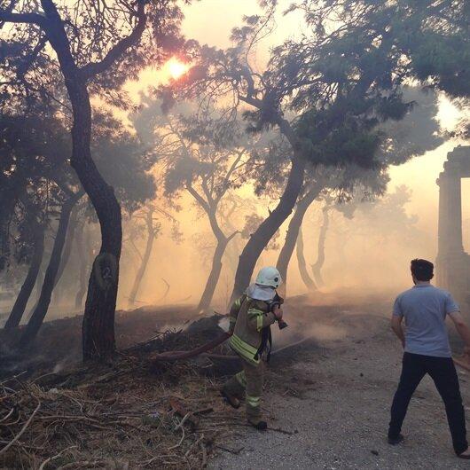 Çanakkale'de otluk alanda yangın