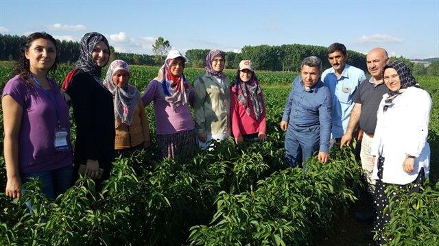 Sanayi kentinden yerli tohuma destek