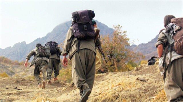 Ağrı'da silahlı 2 terörist öldürüldü