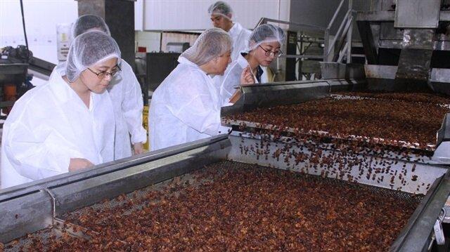 Çin'den gelen bir heyet, Tariş Entegre Tesisleri'nde üretim aşamalarını inceledi