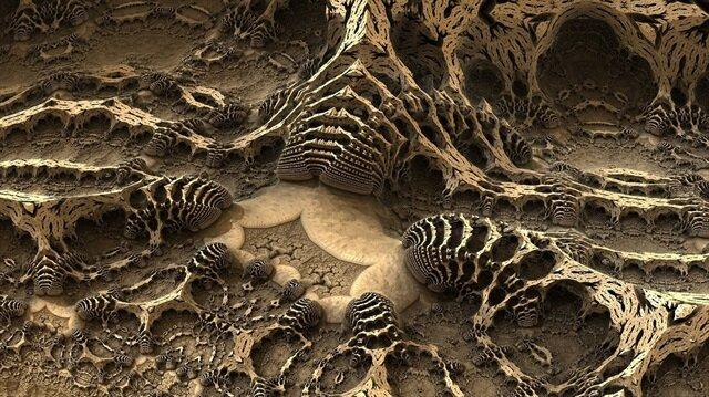 Örnek dinozor fosili görüntüsü.