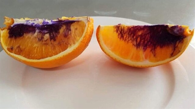 Portakallar mora dönünce uzmanlar harekete geçti