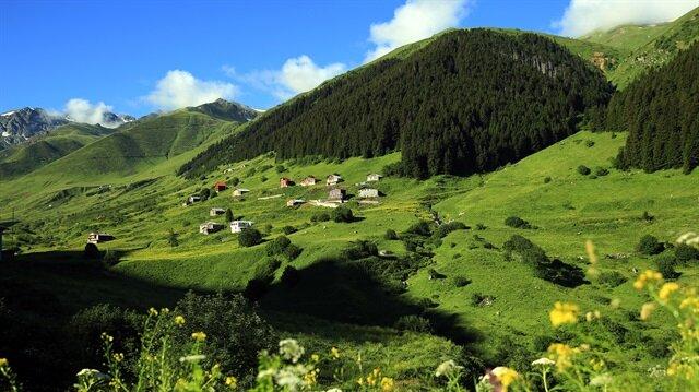 Rize'de, Ayder benzeri 11 yaylada turizm merkezi oluşturulacak.