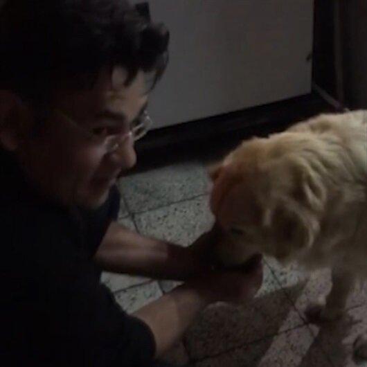 Polisten susamış köpeğe alkışlanacak davranış
