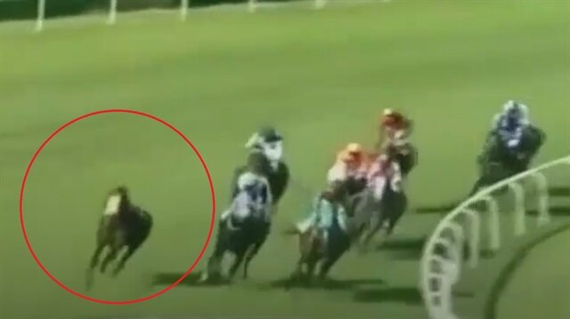 Jokeyi sırtından atan at yarışı birinci bitirdi