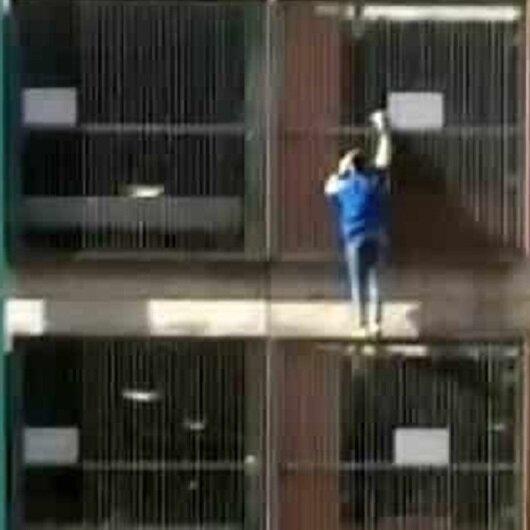 شاهد: فتاة تتسلق مبنى 8 طوابق بيديها العاريتين