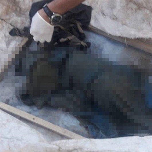 Van'da korkunç olay: Derede yeni doğmuş bebek cesedi bulundu