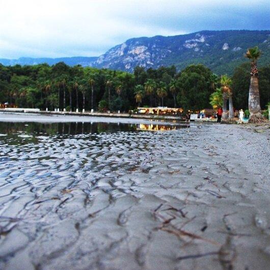 Muğla'da deniz suyu 20 metre çekildi