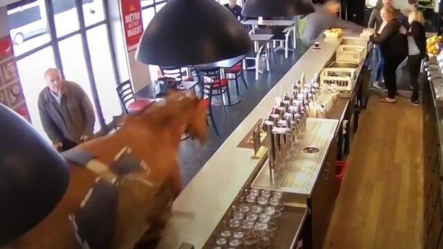 Yarış atı hızını alamadı: Kafeye daldı!