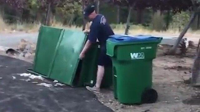 Çöp kutusunda mahsur kalan yavru ayılar böyle kurtarıldı