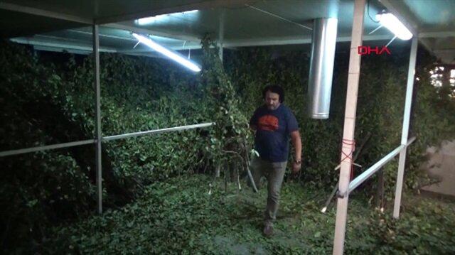 Ormandan topluyor: Tonunu 9 bin liradan satıyor